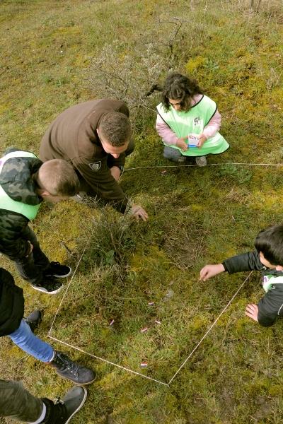 Natuurexcursie speuren naar sporen Naar Buiten!