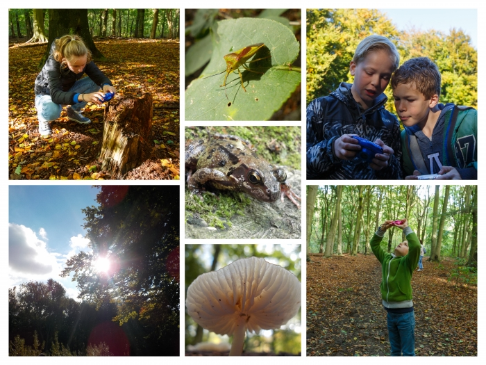 workshop natuurfotografie Naar Buiten Leidschendam-Voorburg