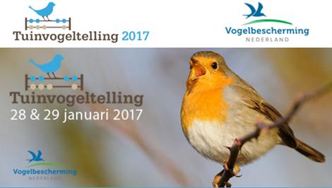 National tuinvogeltelling 2017 Naar Buiten in de natuur